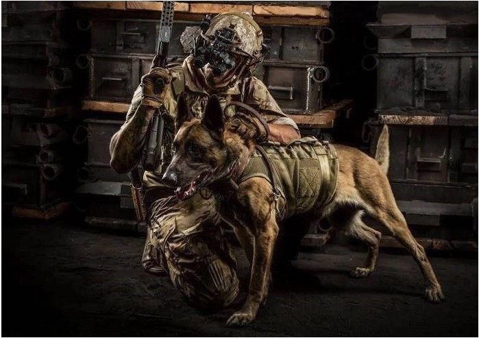 "K-9 Tactical Gear ""The Warrior Spirit"""