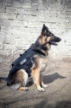 K 9 TIER Alpha Harness